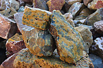 Sea Jasper Rough - AAA Quality 500 lb Lot
