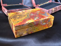 Petrified Wood Jewellery Box