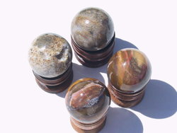 Petrified Wood Spheres (45mm)