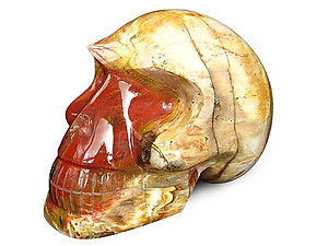 Petrified Wood Skulls