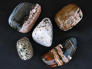 Sea Jasper Gallets - Large
