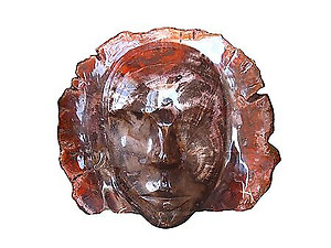Petrified Wood Face