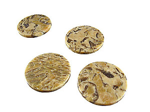 Zebradorite Coasters 4pcs Set