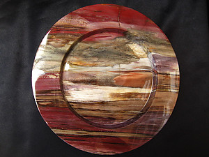 Petrified Wood Plate 8.5 inch - 0.85Kg