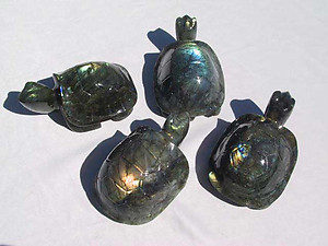 Labradorite Turtle - Large