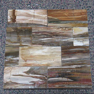 Petrified Wood Tile - longitudinal Cut (50 x 50 cm)