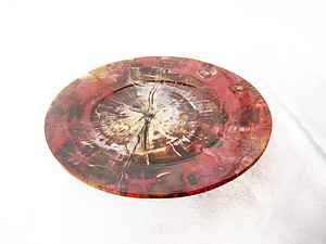 Petrified Wood Plate 6.5 inch - 0.40Kg