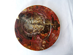 Petrified Wood PLate 6.5 inch - 0.45Kg