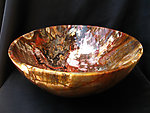 Petrified Wood Bowl 12 inch - 3.66Kg