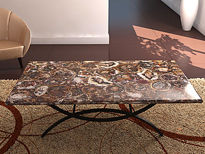 Superbe Petrified Wood Table Top (140 X 83 X 3 Cm)