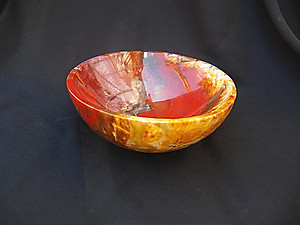 Petrified Wood Bowl 5 inch