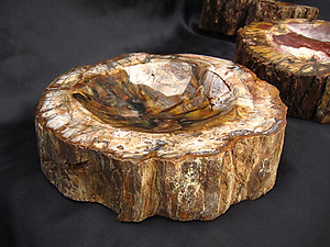 Petrified Wood Candy Dish (2-3Kg/Pc)