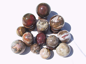 Petrified Wood Spheres (40-60mm) 40 LB Lot