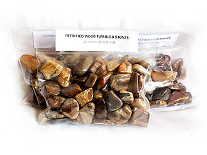 20-30 mm Petrified Wood Tumbled Stones