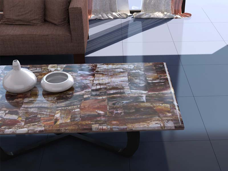 Click To See Larger Image. Petrified Wood Table Top ...