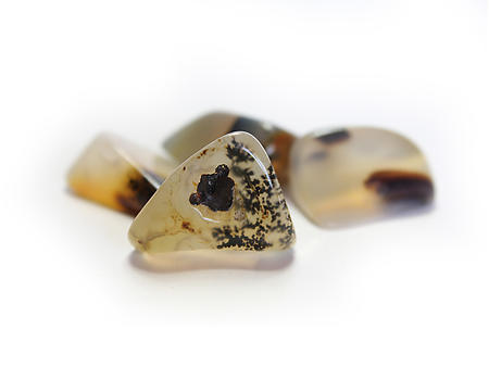 Dendritic Agate Tumbled Stones - Small (18-25mm) - 1LB