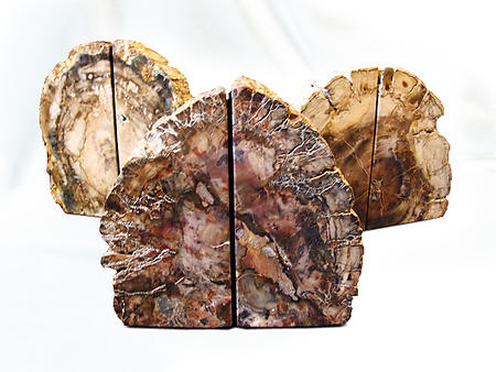 Petrified Wood Bookends (3-5Kg) - AA