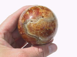 Ammonite Sphere (55mm)