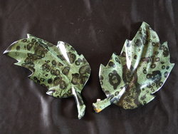 Crocodile Jasper Leaves Medium