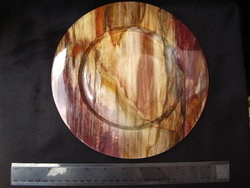 Petrified Wood Plate 8.5 inch - 0.83Kg