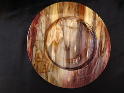 Petrified Wood Plate 8.5 inch - 0.90Kg