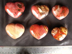 Petrified Wood Decorative Heart